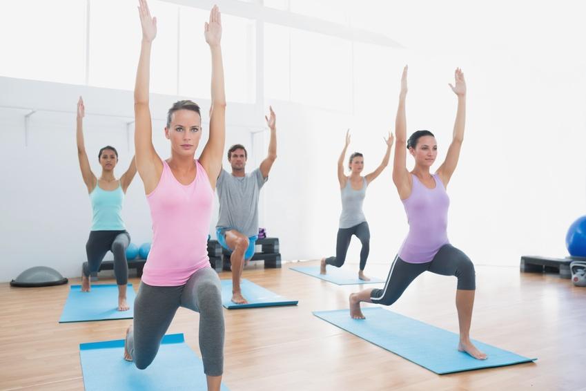 hatha yoga vinyasa iyengar